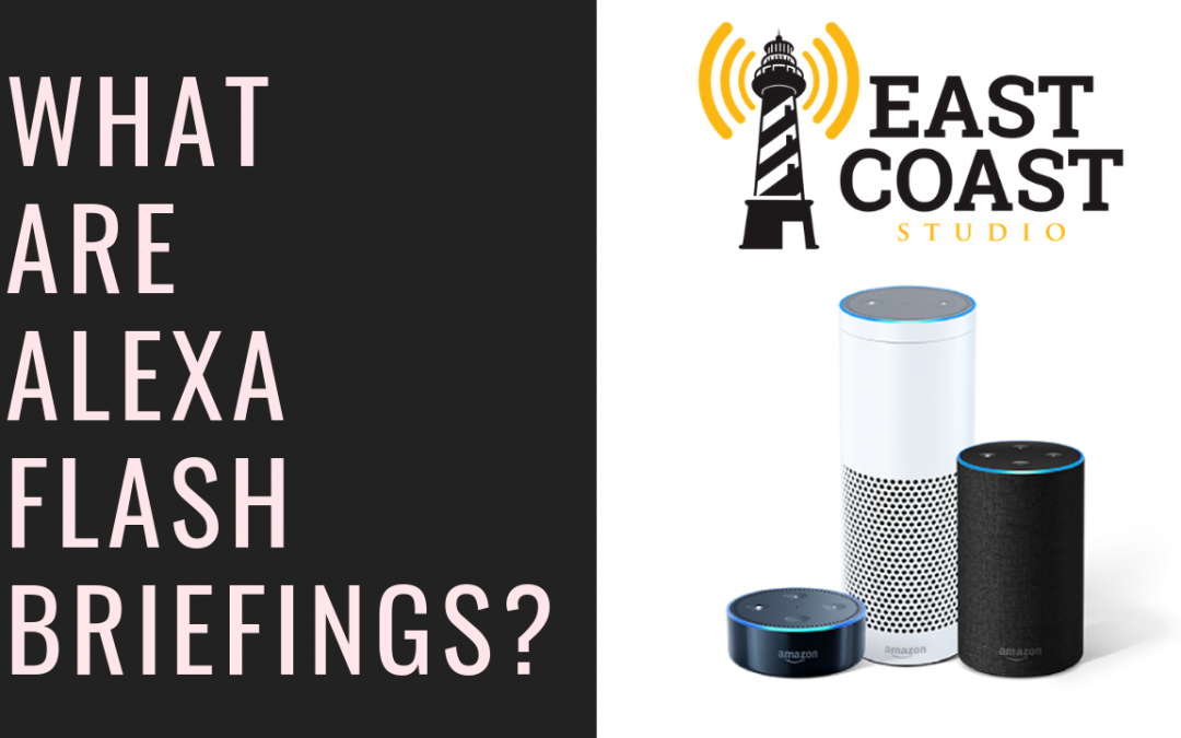 What are Alexa Flash Briefings?